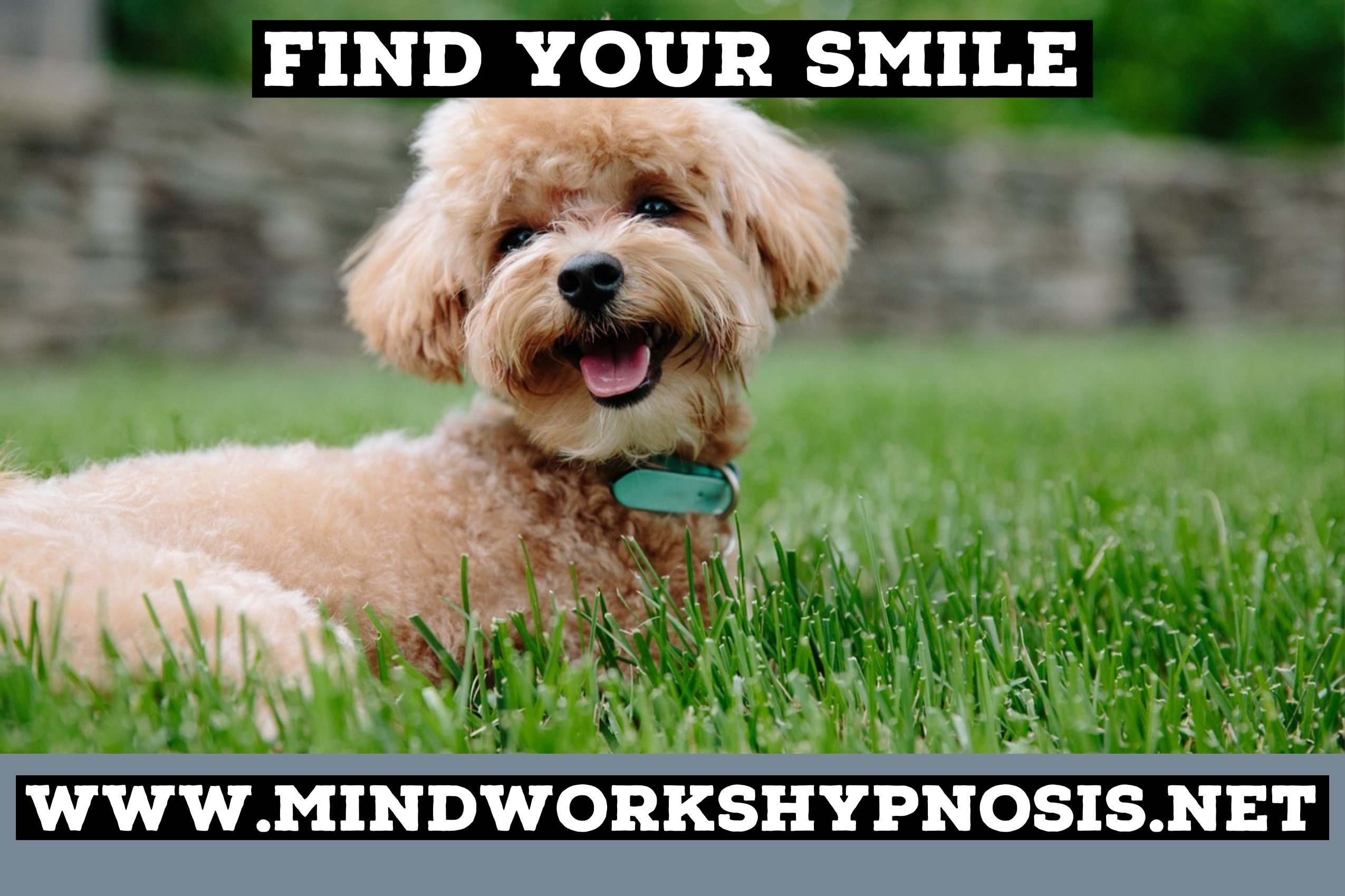 Find Your Smile with Mindworks Hypnosis & NLP