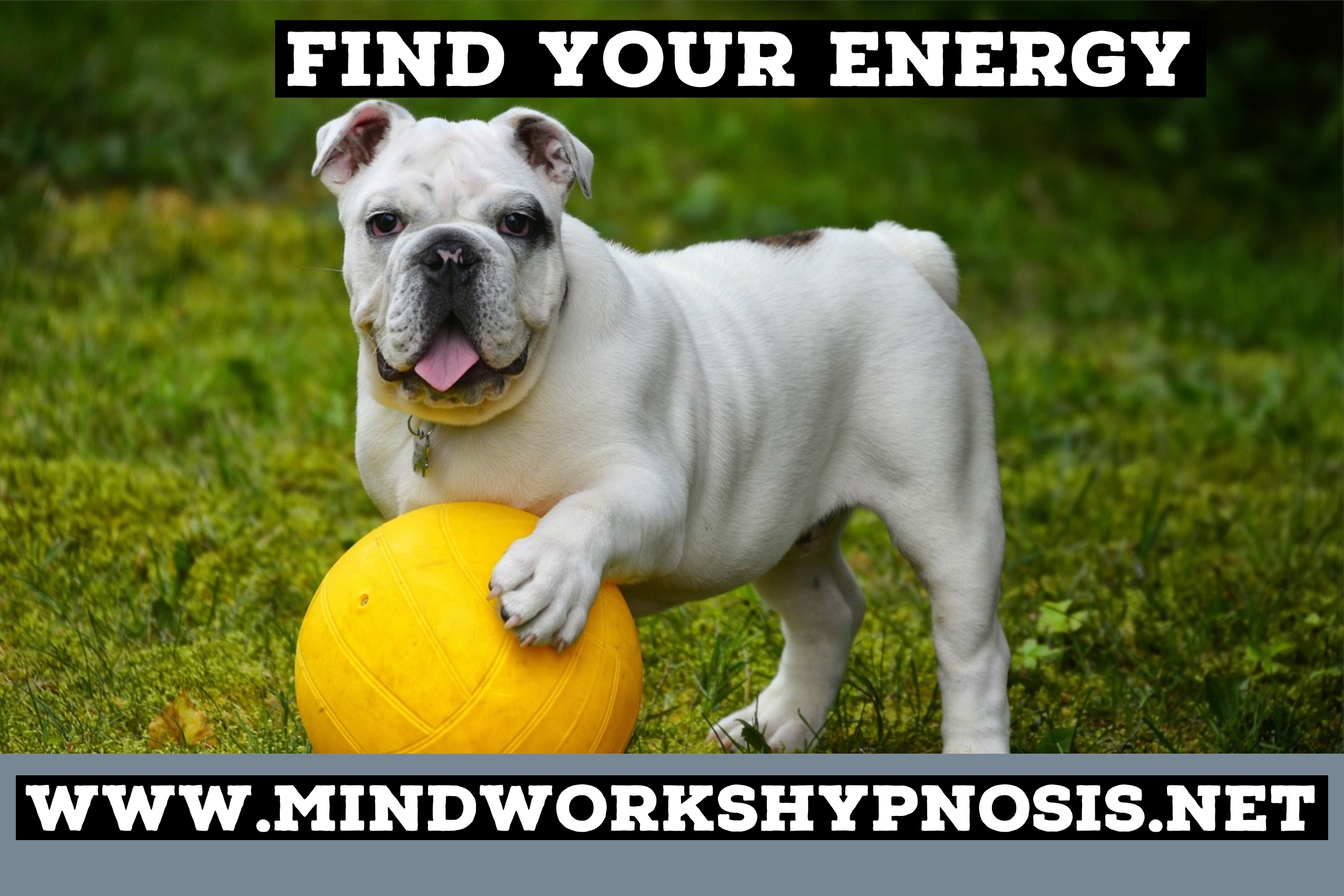 Find Your Energy with Best of Bellevue Mindworks Hypnosis & Neuro Linguistic Programming NLP.