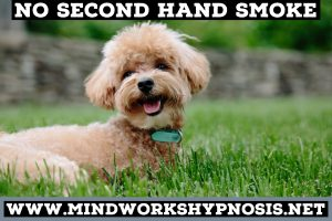 Quit smoking with Mindworks Hypnosis & NLP in Greater Seattle and live in a fresher world.